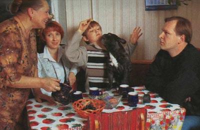 осинка вязание джемперов косами женские